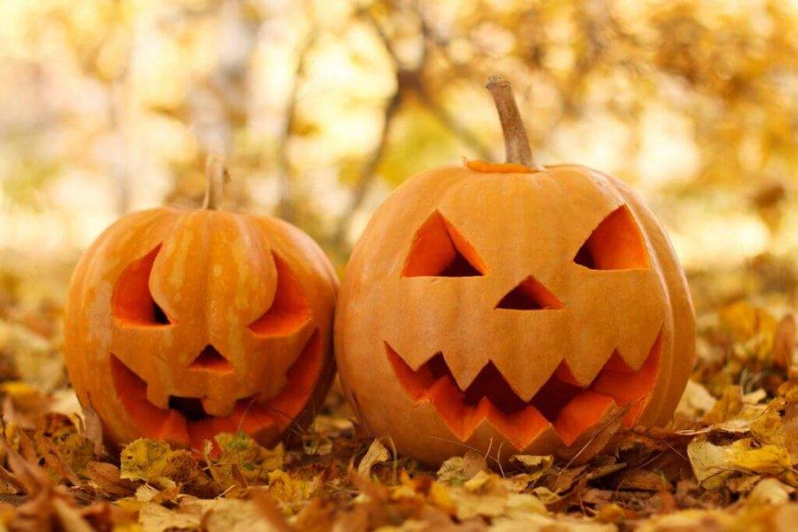 Jesienna promocja — 3 noce zobiadokolacją 31.10–03.11 od175zł/os/noc