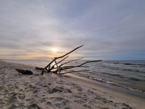 Morze Bałtyckie piękna polska natura